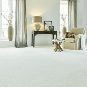 Brighton Carpet