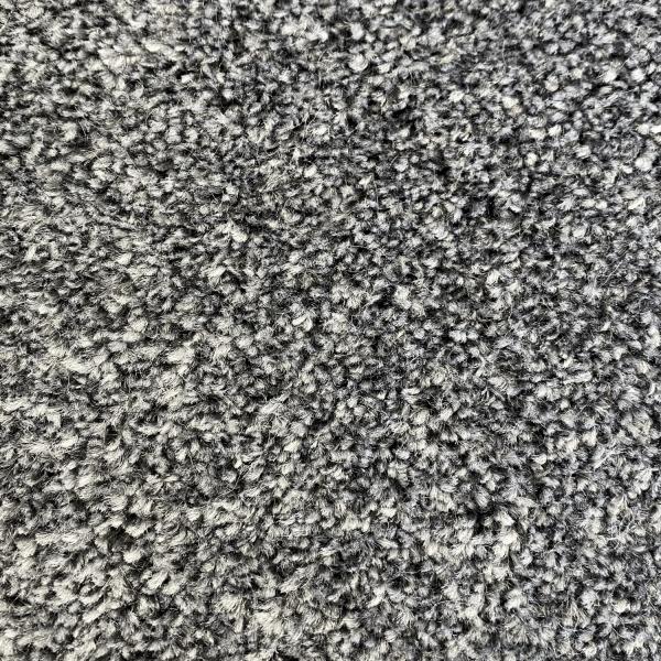 Elitra Carpet 320