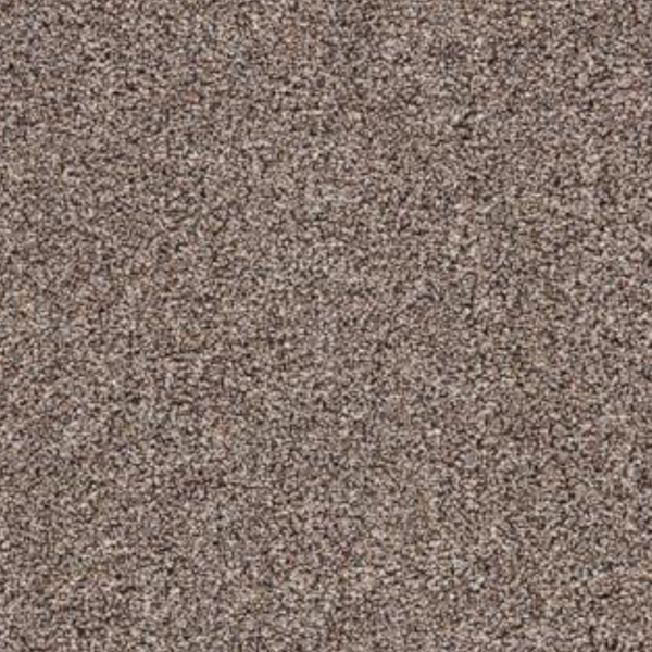 Hampton Bays Carpet RockVale 875